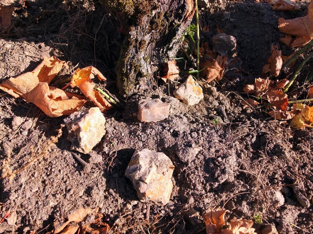 Terroir Vieux Sauvignons Maurepas